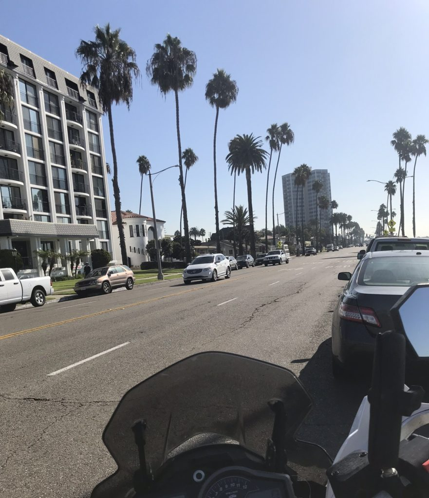 Palm trees line every street on our ride to Los Angeles, California